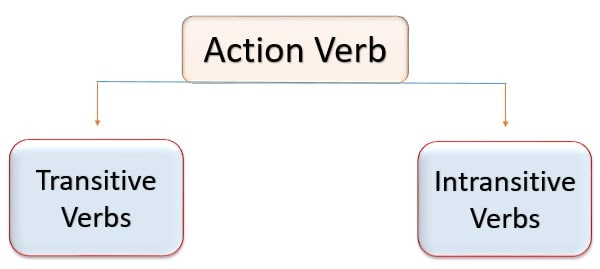 Action verb, transitive verb, intransitives verb, types of verb